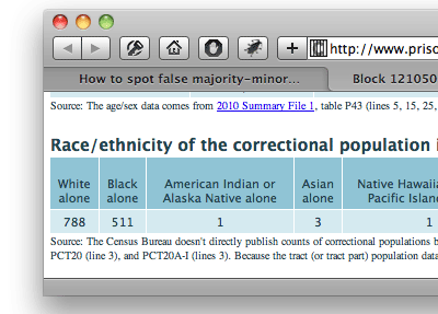 screenshot of the detailed demographics page for a particular census block