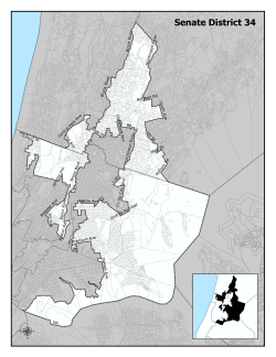 offical map of NYS Senate District 34